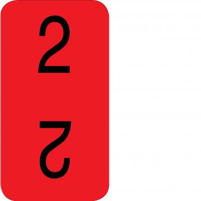 Bottom - 2
