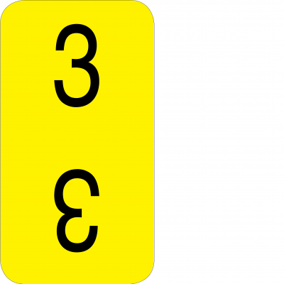 Bottom - 3