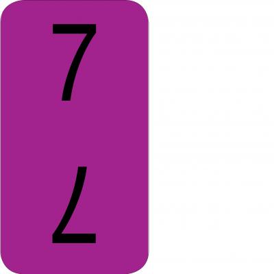 Bottom - 7