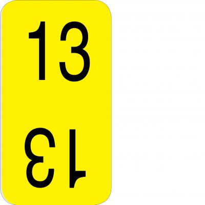Bottom - 13