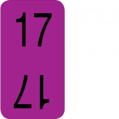 Bottom - 17