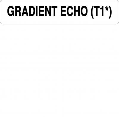 Gradient echo (T1)
