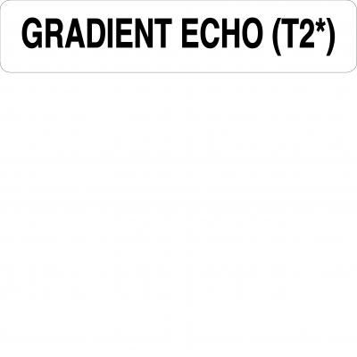 Gradient echo (T2*)