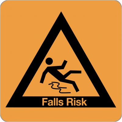 LPM411 - Falls risk